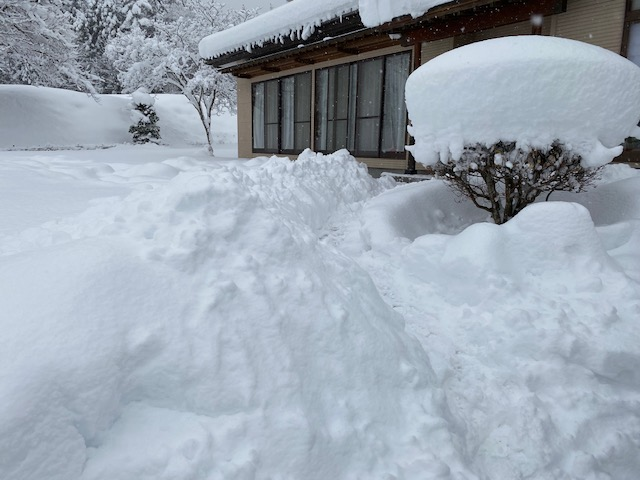 雪の量の写真